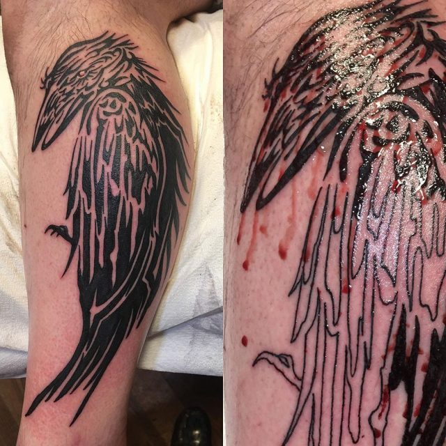 When customers say their tattoo didn't bleed #blacktattoo #tribalblack #blackwork #bloodymess #tattoobliss #raventattoo #crowtattoo #corvid #calftattooshurt