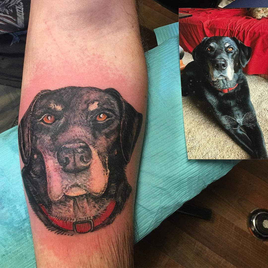 In loving memory of Bella #beautifuldog #memorialtattoo #dogportraittattoo #inlovingmemory #bella #forearmtattoo #tattoobliss